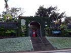 Le jardin botanique de l'Orotava à Tenerife