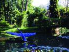 L'arboretum de Trompenburg en Hollande, vue 3