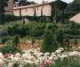 Les jardins du ch�teau Val Joanis
