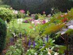 L'élaboration de mon jardin au fil des saisons