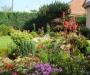 L'élaboration de mon jardin au fil des saisons (suite)