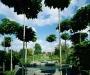 Le jardin du château de Mery-sur-Oise (suite)
