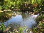 Juin au bassin