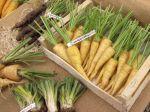 Les vrais faux légumes anciens