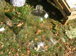 Des cloches au jardin