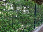 Les clôtures, lier l'utile à l'agréable