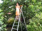 Les dangers du jardinage