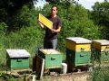 Grégoire MARTIN, apiculteur