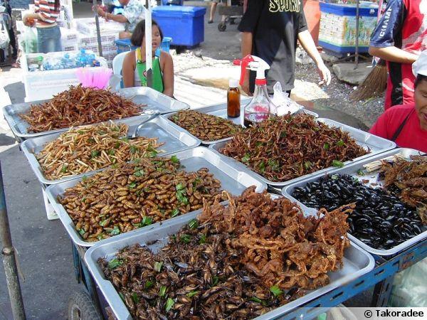 Insectes frits vendus sur un étal à Bangkok en Thaïlande