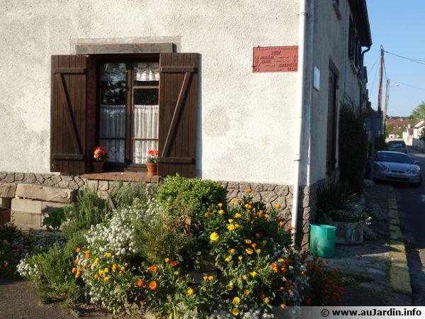Inviter la nature en ville en végétalisant un mur de maison au niveau du trottoir... une action individuelle
