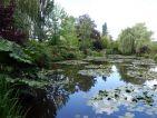 Etang de nénuphars dans le jardin de Claude Monet