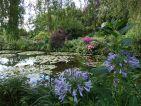 Berge de l'étang dans le jardin de Claude Monet
