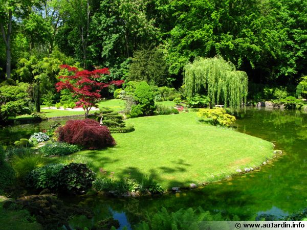 jardin - Photo