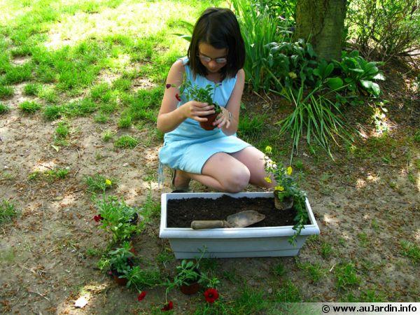 Planter en jardinières, les enfants peuvent vous aider à faire de jolies jardinières
