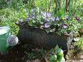 10 astuces pour réussir ses jardinières