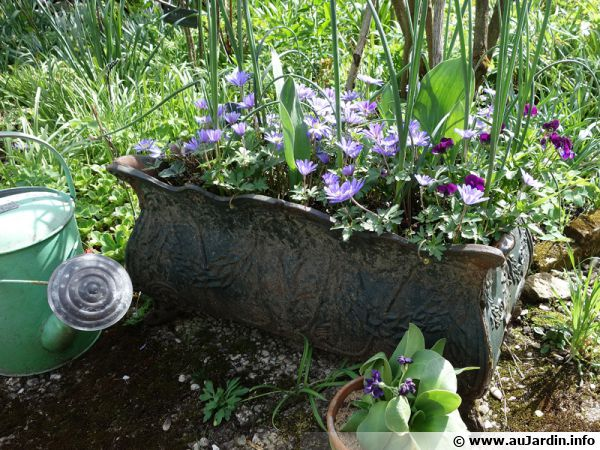 Une jolie jardinière printanière