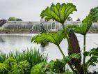 Le jardin botanique royal de Kew, les serres