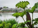 Le jardin botanique royal de Kew