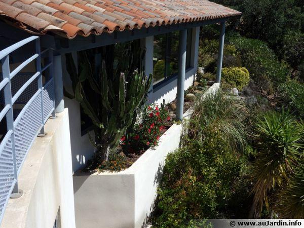 Une maison, sa rocaille de succulentes et son jardin méditerranéen, le végétal apporte à l'ensemble