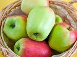 Pommes anciennes suisses