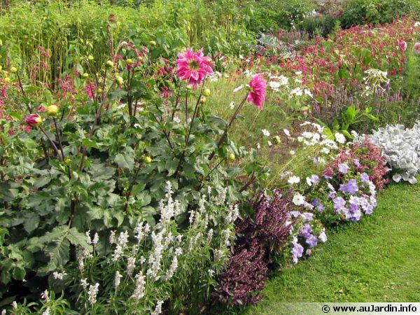Un massif fleuri à entretenir pour prolonger ses fleurs