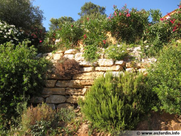Muret fleuri plein sud en zone méditerranéenne
