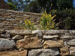 Construire un muret de pierres sèches