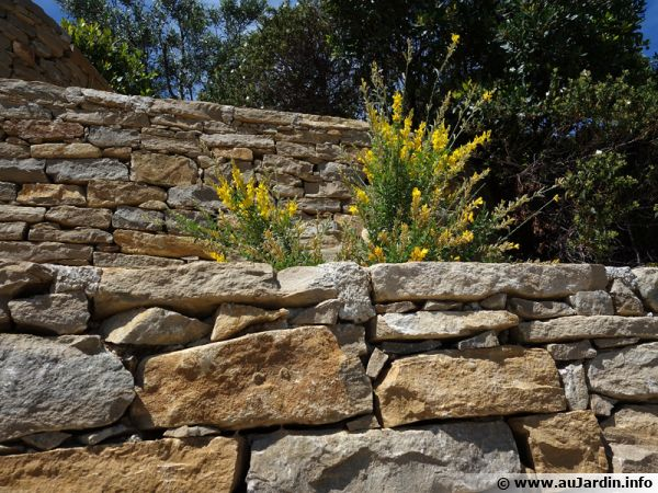 Construire un muret de pierres s ches for Construire muret jardin
