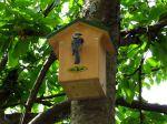 Un nichoir pour les oiseaux