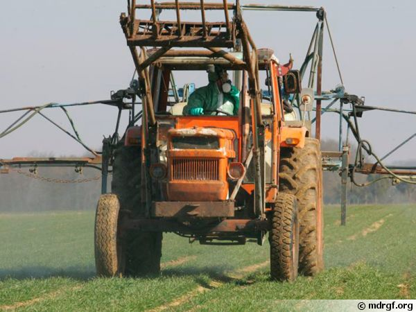 Ependange de pesticides dans un champ