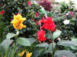 Les fleurs artificielles