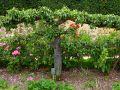 Créer une nouvelle variété de pomme ou de poire