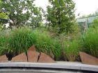 Jardin du Quay Branly, la terrasse tortue