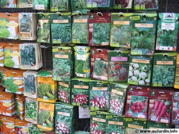 Un rayon de graines dans une jardinerie