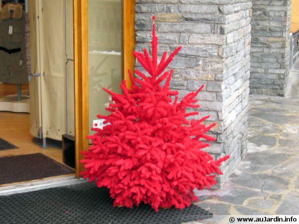 Sapin de Noël et environnement
