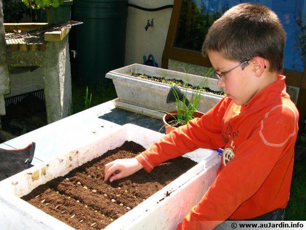 Les semis en caissette Semer-caissette-600x450