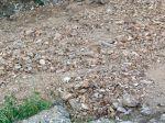 Comment améliorer un sol pauvre?
