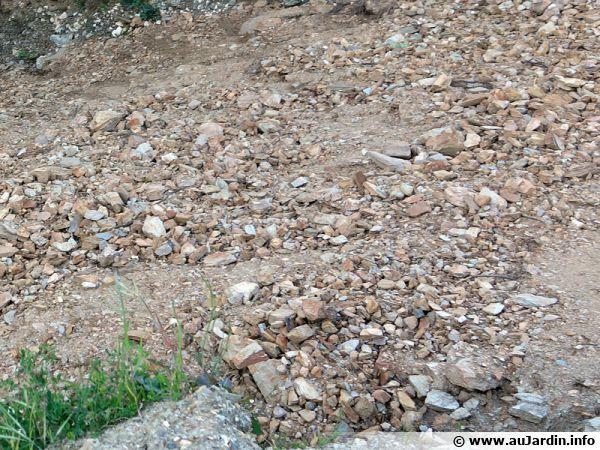 Un sol caillouteux et pauvre après un terrassement, pas facile à rendre cultivable !