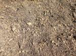 Comment préparer le sol au semis?