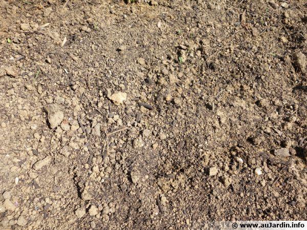 Un sol travaillé et enrichi pour un semis en pleine terre à venir