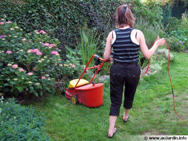 La tonte de la pelouse