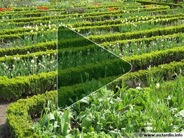 Aménagement et jardins