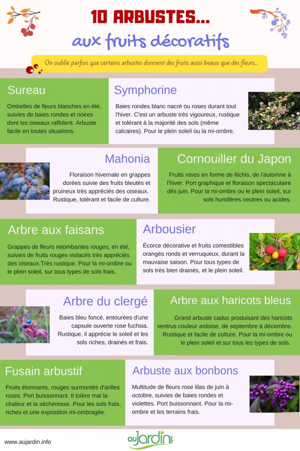 10 arbustes aux fruits décoratifs