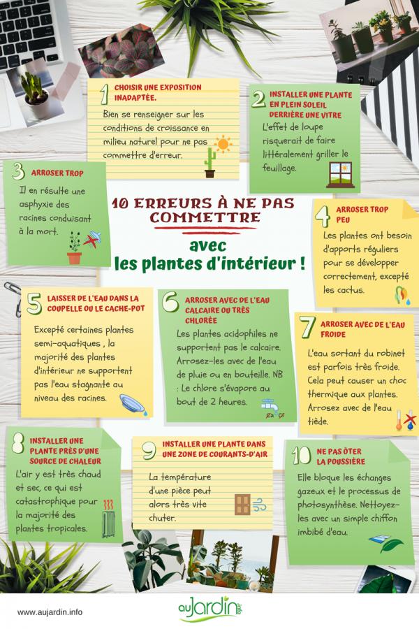 10 erreurs à ne pas commettre avec les plantes d'intérieur