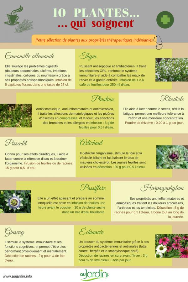 10 plantes qui soignent
