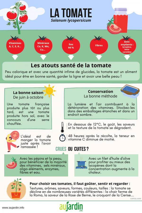 La tomate, un légume bienfaiteur