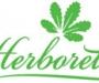 Interview de Xavier Riffet, Consultant Horticole pour L'Herboretum de Saint-Ay