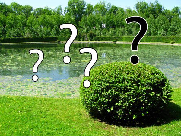 FAQ du jardin