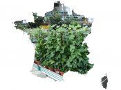 Annuaire des jardineries de France