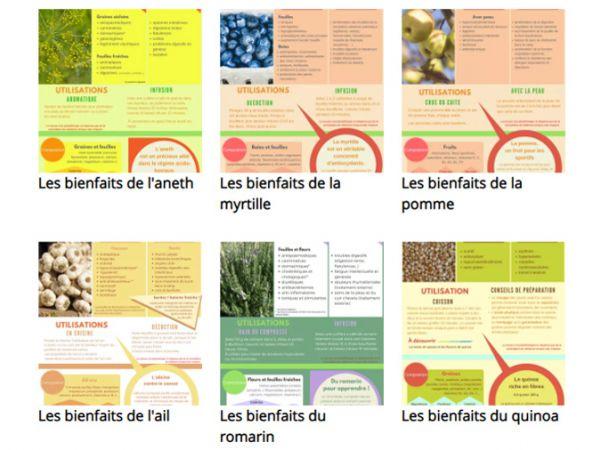 Nos infographies jardin